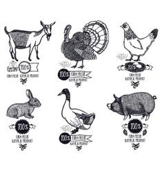 farm product chicken goat duck pig turkey rabbit vector image