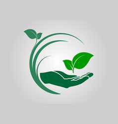 Leaf in hand icon vector