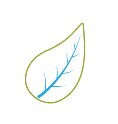 line natural leaf of plant and exotic botany vector image