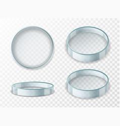 Petri dish realistic 3d empty glass lab vector