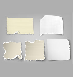 Set of tear-off paper with ragged edges vector
