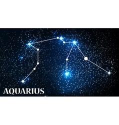 Symbol Aquarius Zodiac Sign vector image