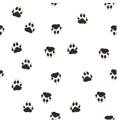 trail the wolf paw vector image