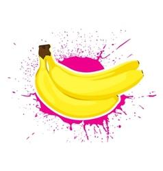 ripe bananas vector image