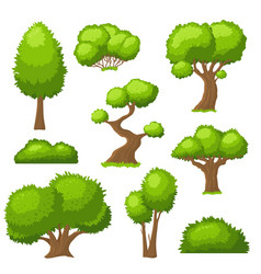 Cartoon tree and bush garden bushes isolated vector