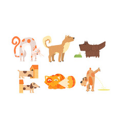 funny cats and dogs of different breeds cute vector image