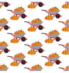 pumpkin harvest pattern vector image