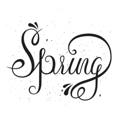 Typographic Lettering - Spring vector