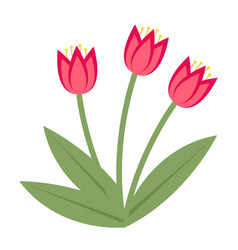 bouquet of pink tulips icon flat style isolated vector image