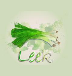 leek watercolor food vector image