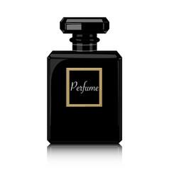 perfume print black bottle haute couture vector image vector image