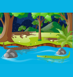 Crocodiles in the river and on land vector