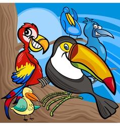 Cute birds group cartoon vector