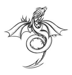dragon drawn in engraving style isolated on white vector image