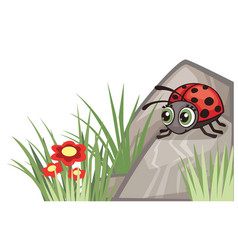 Ladybug corner design vector