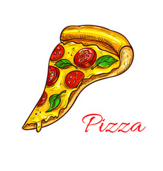 Pizza slice pizzeria fast food icon vector