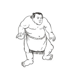 professional sumo wrestler or rikishi in fighting vector image