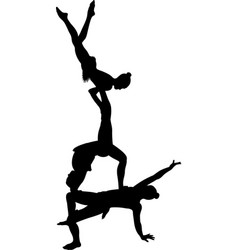 gymnasts acrobats vector image
