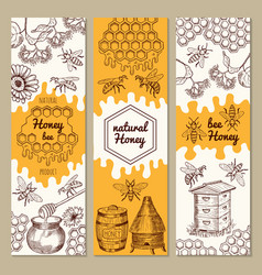 banners with honey product pictures bee vector image