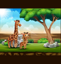 a giraffe with her cub in a savanna field vector image
