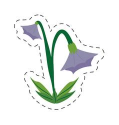 Cartoon blue bell flower image vector