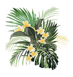 composition with yellow plumeria flowers vector image