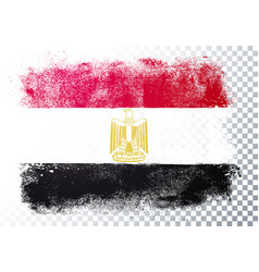 distortion grunge flag egypt vector image