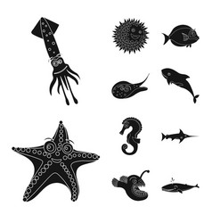 Sea and animal logo vector
