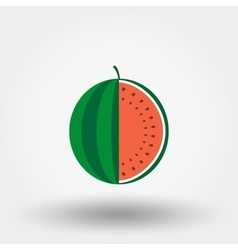 Watermelon flat icon vector image