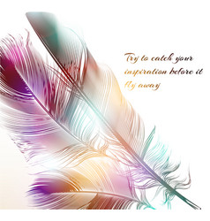 With engraved feathers conceptual back vector