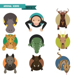 Animal avatars vector image