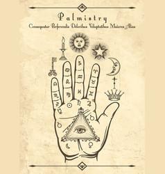 vintage palmistry symbols on hand vector image