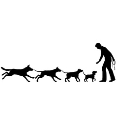 Dog domestication vector image vector image
