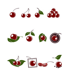 cherry icons set vector image