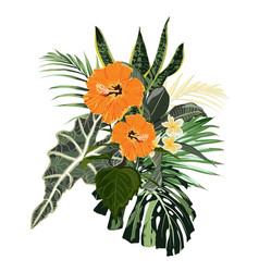 composition with orange hibiscus vector image