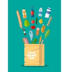 Fresh healthy organic produce and paper bag vector image