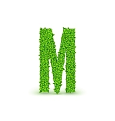 Green Leaves font M vector image