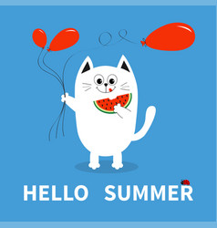 hello summer white cat holding red balloon vector image