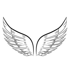 sketch of a pair of white wings vector image