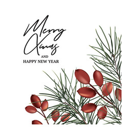 Xmas modern invitation with fir branch and red vector