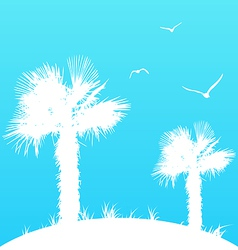 Summer background with palm trees and seagulls vector image vector image