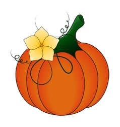 Autumn Pumpkin and leaves cartoon vector image vector image