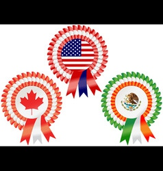 north american rosettes vector image vector image