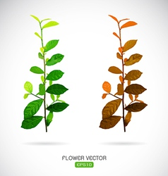image of leaves vector image vector image