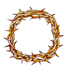 crown of thorns jesus christ top view color vector image
