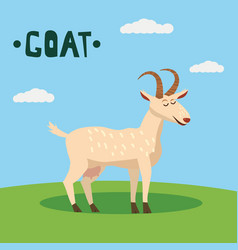 cute goat farm animal character farm animals vector image