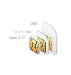 different sim card type in isometric style vector image