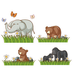 four animals in garden vector image