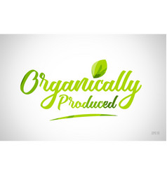 Organically produced green leaf word on white vector