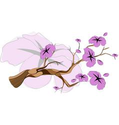 sketch sakura branch vector image